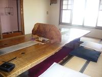 hirakitakeya04.JPG