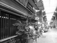 takamura sunaba04.jpg