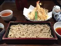 20161106_kawasemi_2.jpg