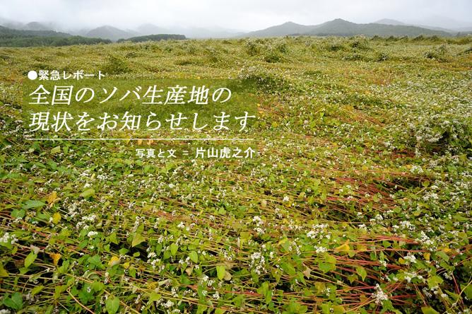 全国の蕎麦畑