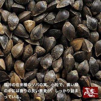 kotsubu9373.jpg